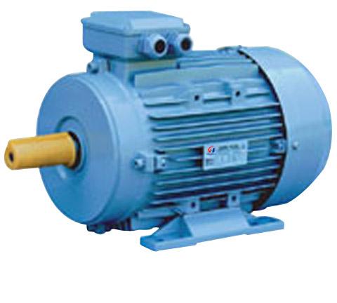 IE2电机