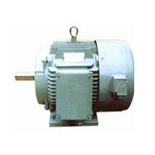 永磁同步变频调速三相交流电动机